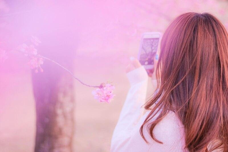 スマホで桜を撮る女の子