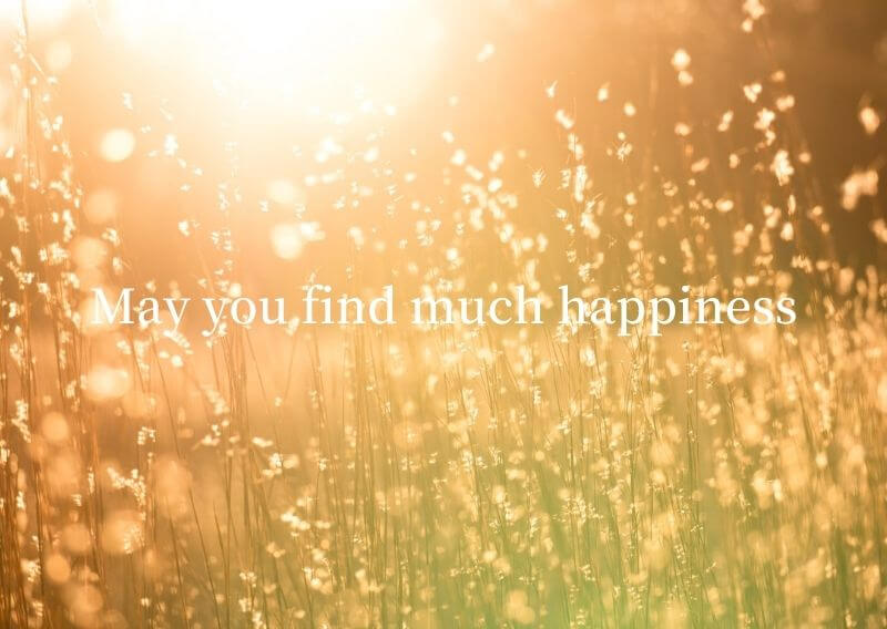 May you find much happiness
