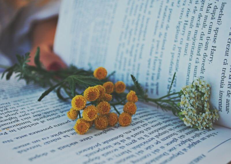 おしゃれな本と花